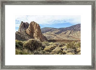 Nature Reserve Parador Tenerife Framed Print