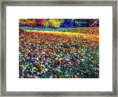 Nature Romancing Us Framed Print