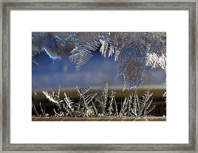 Nature' S Art Work Framed Print