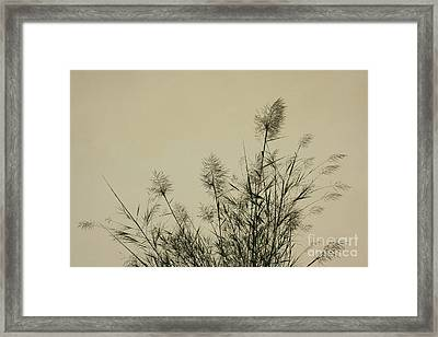 Nature Scenery In Lijiang China Framed Print by Julia Hiebaum