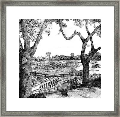 Nature Sketch Framed Print