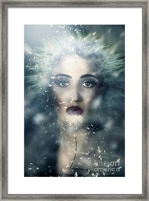 Nature Spirit Guide  Framed Print by Jorgo Photography - Wall Art Gallery