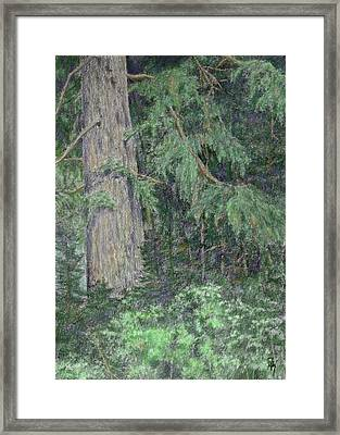 Nature Study No 1 Colorized Framed Print
