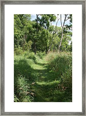 Nature Trail Framed Print by Heather Green