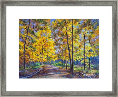 Nature Trail Turn Of Autumn Framed Print