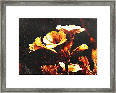 Framed Print featuring the photograph Nature Uncovered  by Fine Art By Andrew David