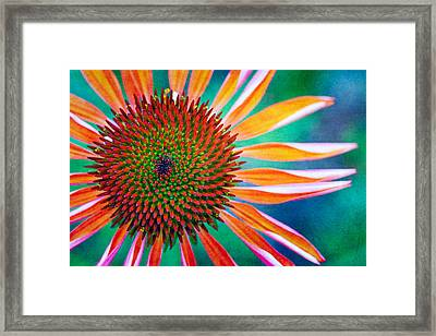Natures Anti Depressant Framed Print