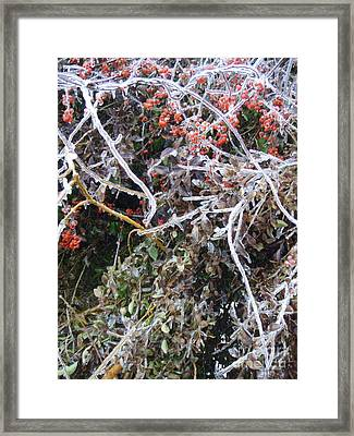 Natures Art  Framed Print by Kristine Nora