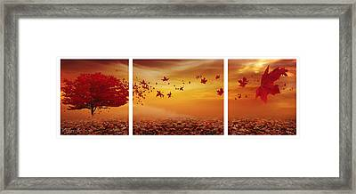 Nature's Art Framed Print by Lourry Legarde