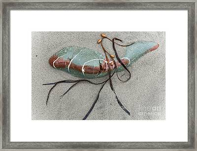 Framed Print featuring the photograph Nature's Art by Werner Padarin