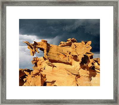 Framed Print featuring the photograph Nature's Artistry Nevada 3 by Bob Christopher