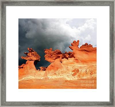 Nature's Artistry Nevada Framed Print by Bob Christopher
