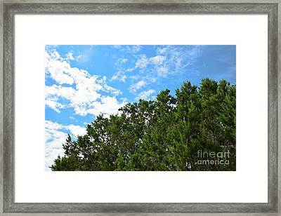 Nature's Beauty - Central Texas Framed Print by Ray Shrewsberry