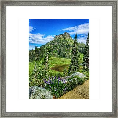 Natures Beauty #visitwashingtonstate Framed Print