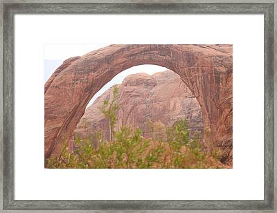 Nature's Bridge Framed Print by Amy Holmes