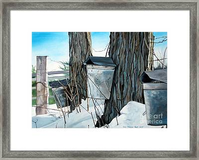 Nature's Candy Framed Print