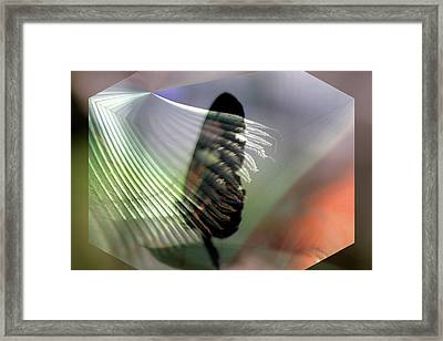 Framed Print featuring the digital art natures Caress by Irma BACKELANT GALLERIES