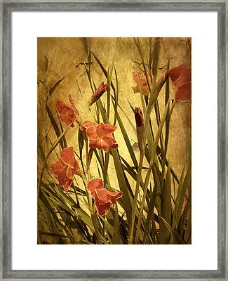 Nature's Chaos In Spring Framed Print by Jessica Jenney