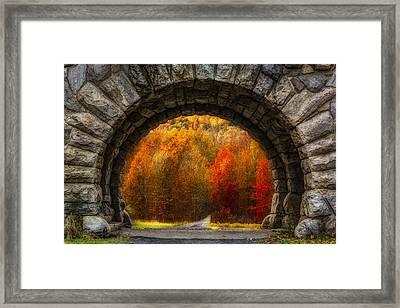 Natures Color Schemes Framed Print by Susan Candelario