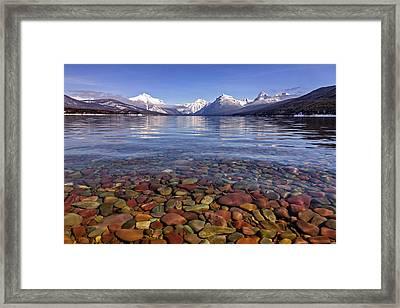 Nature's Colors Framed Print