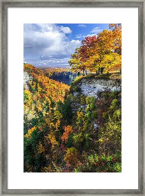 Natures Colors Framed Print by Mark Papke