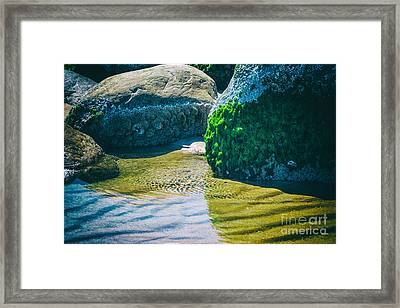 Natures Colors Framed Print