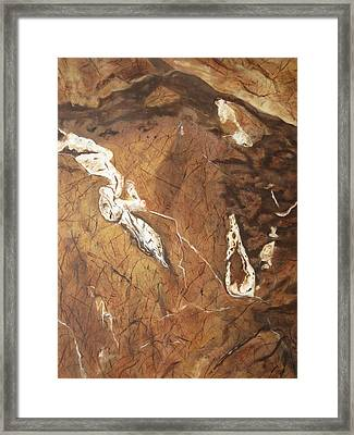 Natures Creation Framed Print