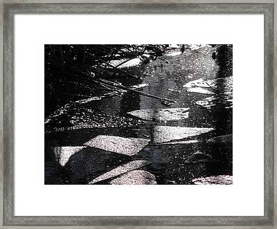 Nature's Cubism Framed Print