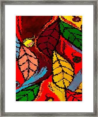 Natures Explosion Framed Print