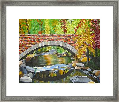 Natures Eye Framed Print by Donna Blossom