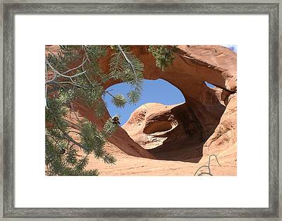 Framed Print featuring the photograph Natures Eye by Fred Wilson