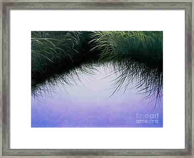 Nature's Eyelashes Framed Print