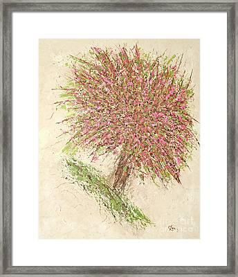 Nature's Fireworks Framed Print