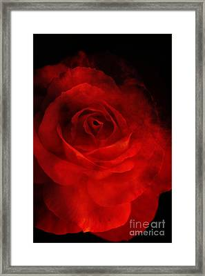 Framed Print featuring the photograph Natures Flame by Stephen Mitchell