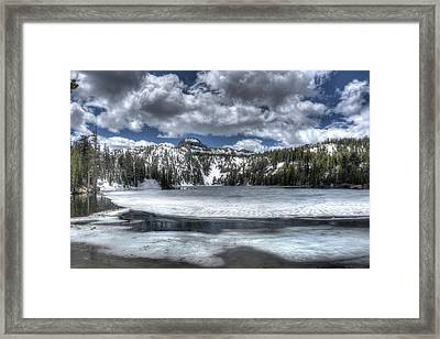 Nature's Flawless Beauty Framed Print