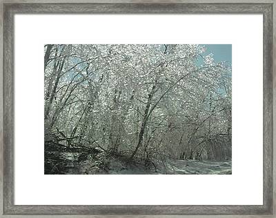 Framed Print featuring the photograph Nature's Frosting by Ellen Levinson