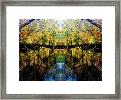 Natures Gate Framed Print