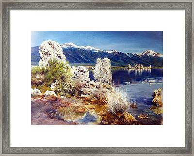 Nature's Ghosts Framed Print by Marion  Hylton