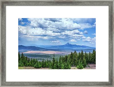 Nature's Gift Framed Print