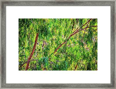Framed Print featuring the photograph Natures Greens, Yanchep National Park by Dave Catley
