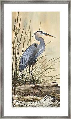 Nature's Harmony Framed Print by James Williamson