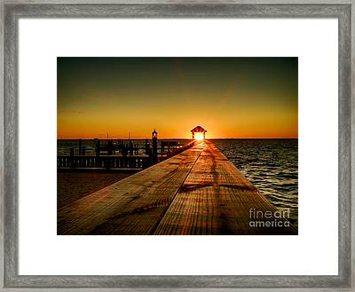 Framed Print featuring the photograph Nature's Lantern by Mark Miller