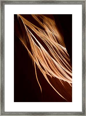 Natures Lines Framed Print by Adam Romanowicz