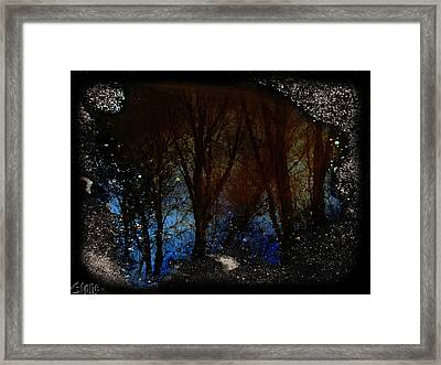 Natures Looking Glass 2 Framed Print