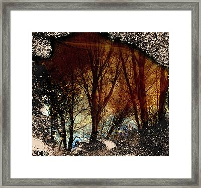 Natures Looking Glass 3 Framed Print