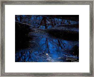 Natures Looking Glass Framed Print