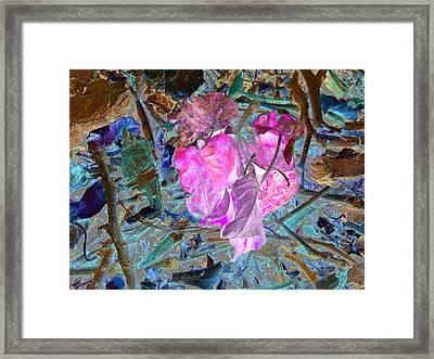 Nature's Love Framed Print