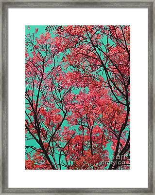 Natures Magic - Fire Red Framed Print