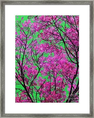 Natures Magic - Pink And Green Framed Print