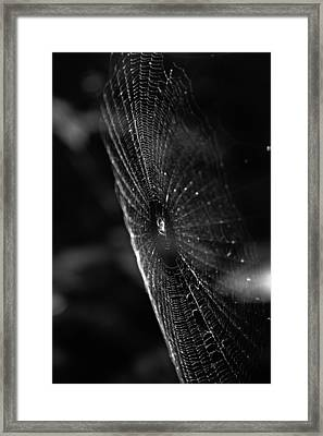Nature's Masterpiece Framed Print by Off The Beaten Path Photography - Andrew Alexander